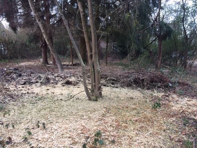 Grundstück in Dudweiler nähe Krankenhaus