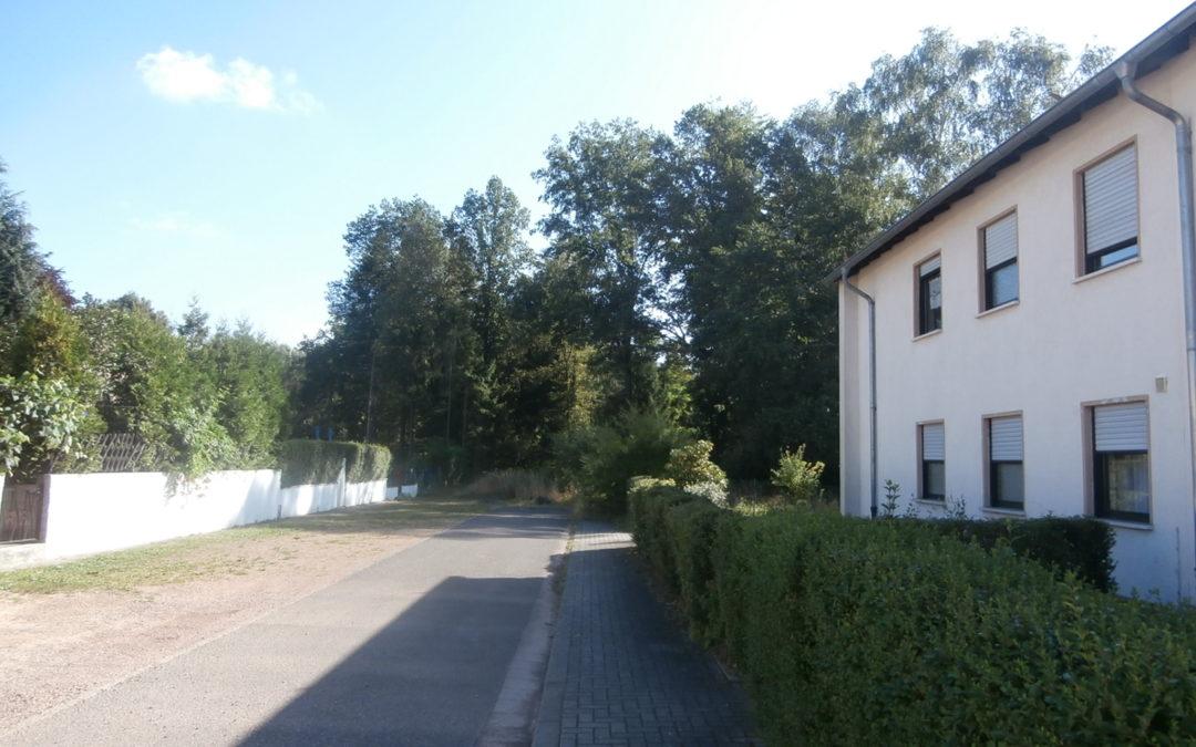 Wohnen im Mühlwald in direkter Waldrandlage von St. Ingbert