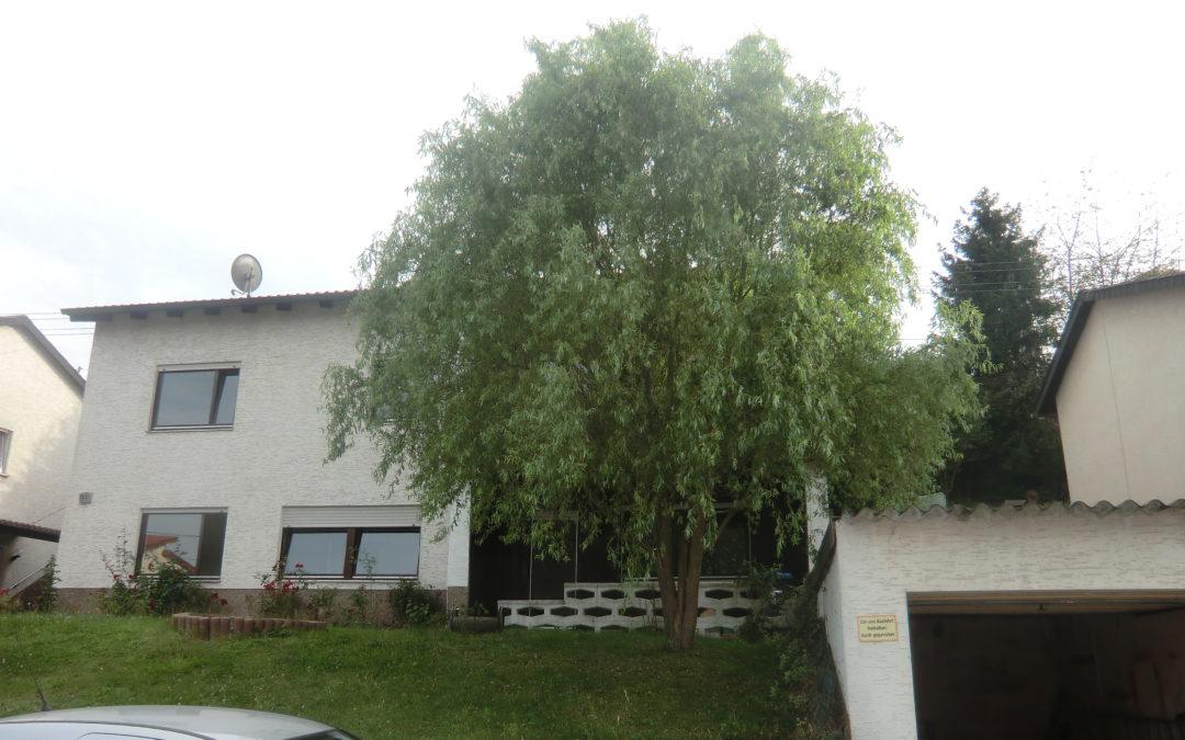 Wohnen auf einer Ebene mit Einliegerwohnung in sehr guter Wohnlage